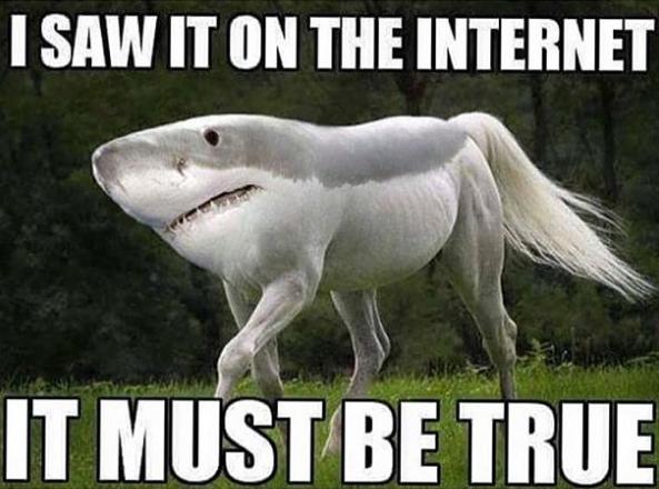 Si l'internet le dit…